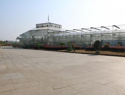 连栋玻璃温室外景展览