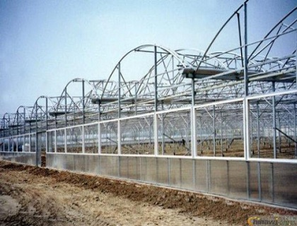 圆拱型阳光板连栋温室