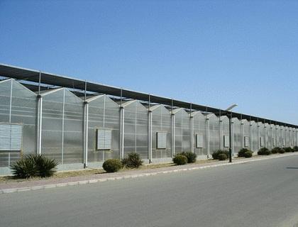 文洛型PC阳光板温室