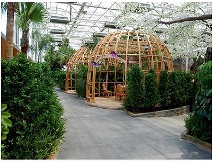 生态餐厅温室棚