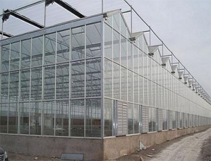智能连栋温室
