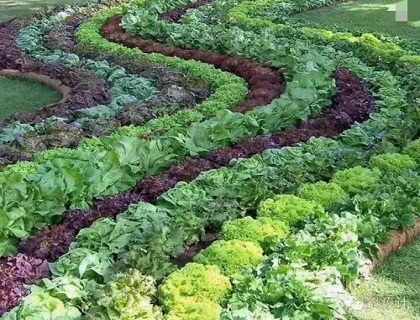 植物生态温室
