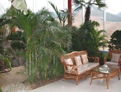 生态温室餐厅大棚