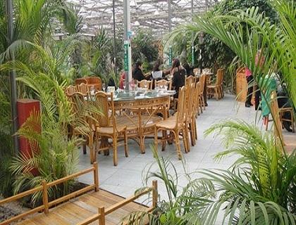 上饶生态餐厅大棚