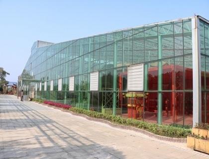 景德镇连栋玻璃温室展示