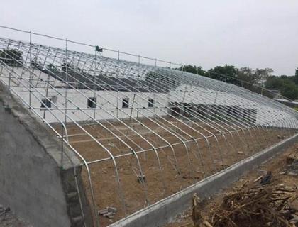 砖墙日光温室