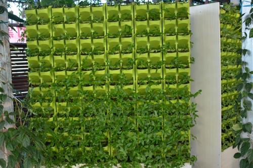 植物墙批发