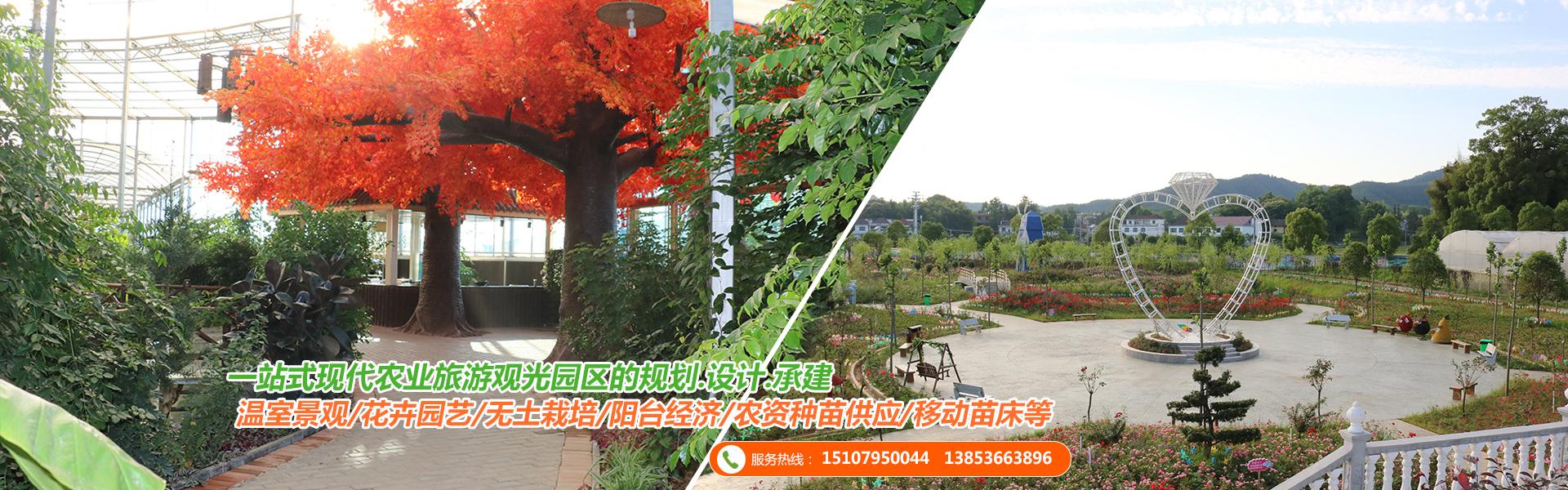 安徽温室工程